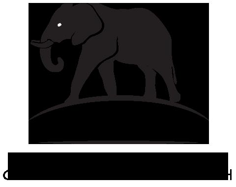 Elephant Research Program